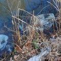 Disposable Plastics: Single Use, 'Eternal'Waste